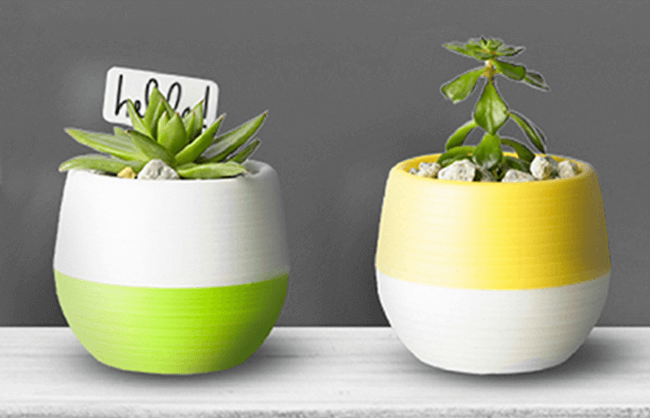Click on this succulent planter lifestyle image to open the A+ page