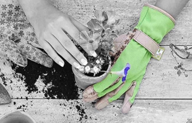 Dig It garden gloves Amazon Storefront